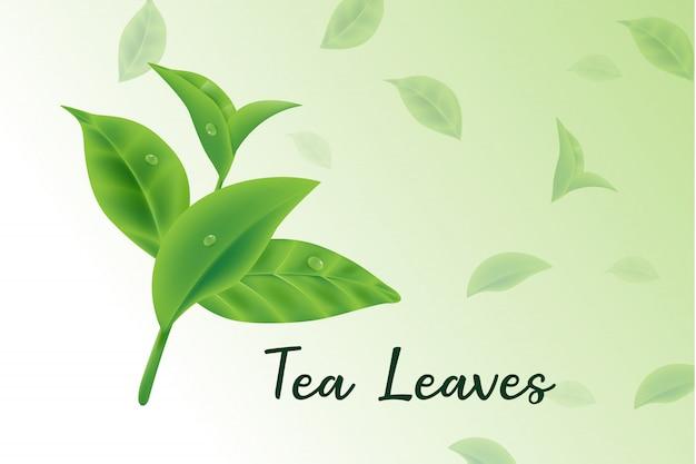 Folhas de chá verde fresco vector 3d realista, padrão de folhas de chá