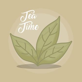 Folhas de chá verde