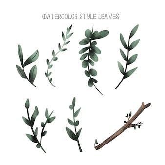 Folhas de estilo aquarela, coleção de mão desenhada