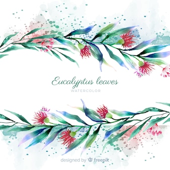 Folhas de eucalipto em aquarela