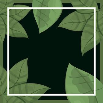 Folhas de fundo preto