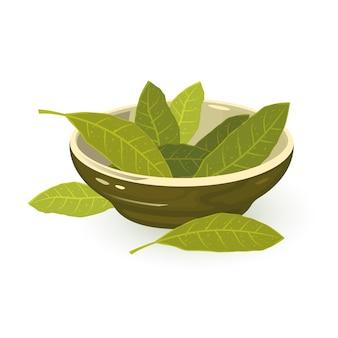Folhas de louro verdes aromáticas em uma tigela de porcelana