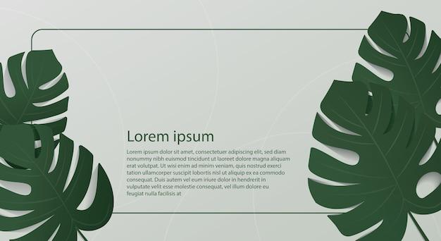 Folhas de monstera de fundo de verão no fundo da parede verde