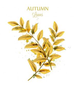 Folhas de outono aquarela