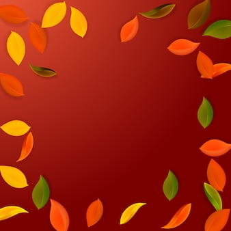 Folhas de outono caindo. folhas puras vermelhas, amarelas, verdes, marrons voando.