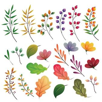 Folhas de outono colorida ilustração de conjunto de coleta de elemento