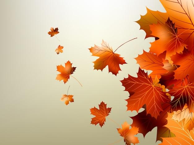Folhas de outono coloridas caindo e girando.