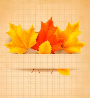 Folhas de outono coloridas em um papel velho voltar para o fundo da escola