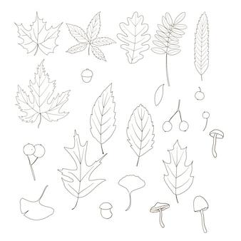 Folhas de outono com arte de linha da moda Vetor Premium