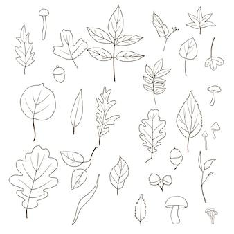 Folhas de outono com arte de linha da moda