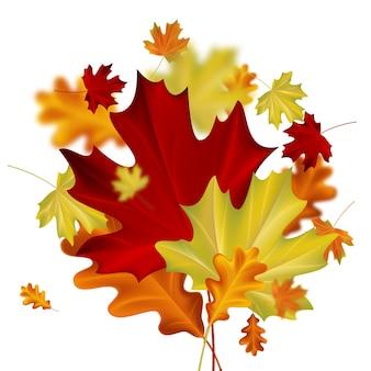 Folhas de outono com efeito de desfoque em fundo branco. ilustração outonal do vetor.