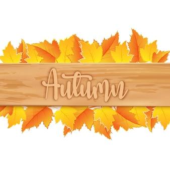 Folhas de outono com placa de madeira em fundo branco