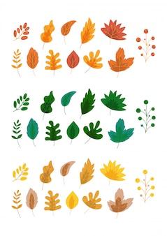 Folhas de outono composições coloridas, conjunto de ilustrações vetoriais. folhagem dos desenhos animados