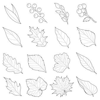 Folhas de outono definidas em preto e branco. desenho linear. livro para colorir anti-stress para crianças e adultos