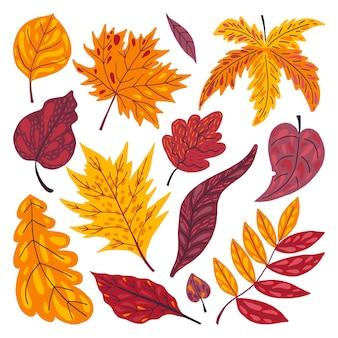 Folhas de outono desenhadas à mão