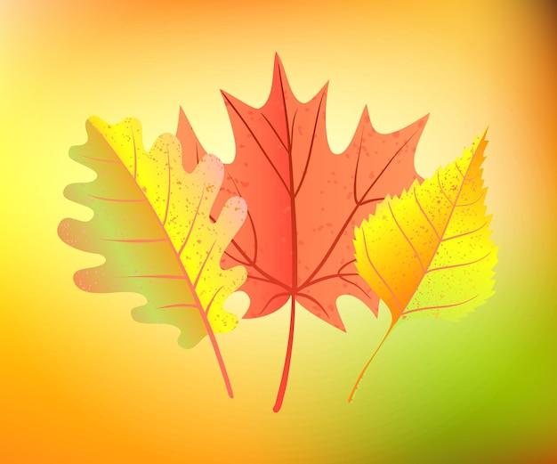 Folhas de outono em desfocar o fundo. ilustração vetorial