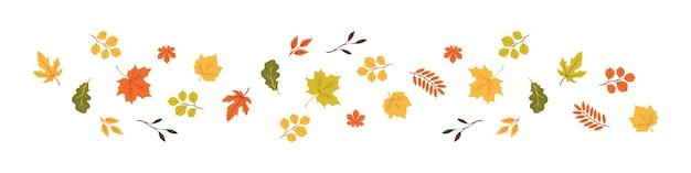 Folhas de outono em uma fileira. olá outono. conjunto de folhas de outono, conceito isolado. ilustração vetorial
