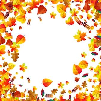 Folhas de outono espalhadas pelo fundo com carvalho, bordo e sorveira
