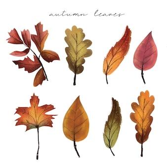 Folhas de outono - mão desenhada
