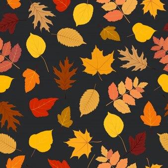 Folhas de outono sem costura padrão colorido fundo