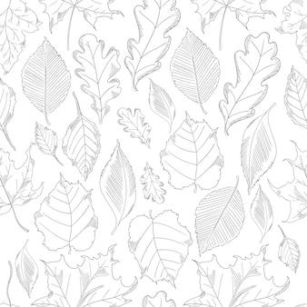 Folhas de outono sem costura padrão definido em um estilo de desenho.