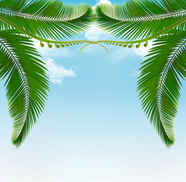 Folhas de palmeira no céu com nuvens