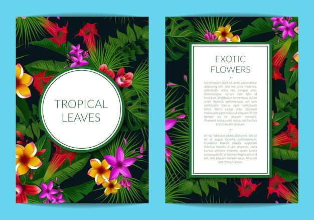 Folhas de palmeira tropical e modelo de elementos de flor exótica para cartão com quadros