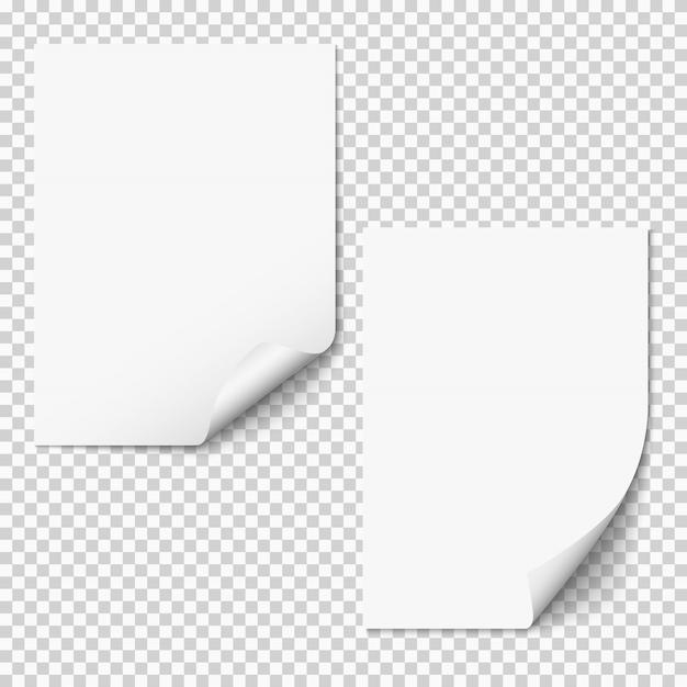 Folhas de papel em branco com canto curvo