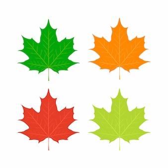 Folhas de plátano, símbolo do canadá. bordo vermelho, laranja, amarelo