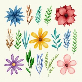 Folhas de primavera e flores coloridas
