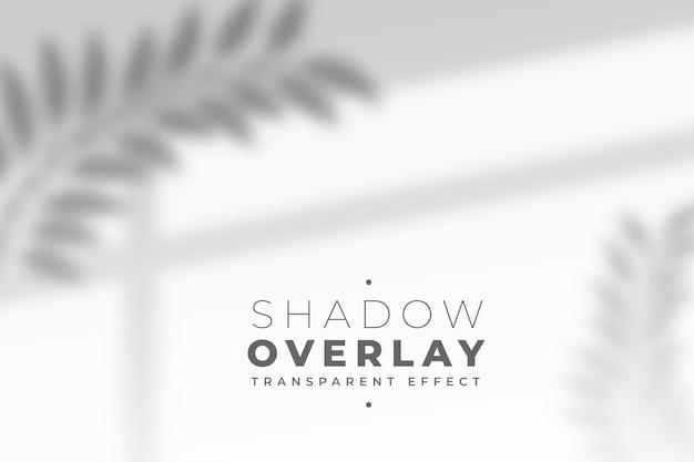 Folhas e efeito de sobreposição de sombra no painel da janela