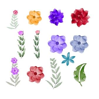 Folhas e flores em aquarela coleção de conjunto de vetores premium