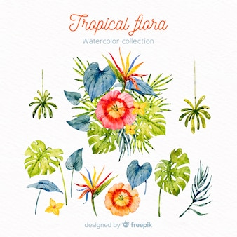 Folhas e flores tropicais