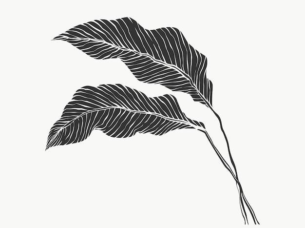 Folhas e folhagem de linha tropical isoladas no fundo branco desenho de ilustrações vetoriais