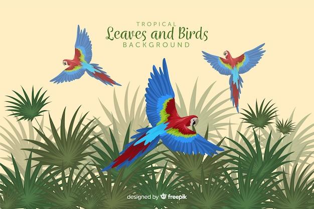 Folhas e pássaros tropicais