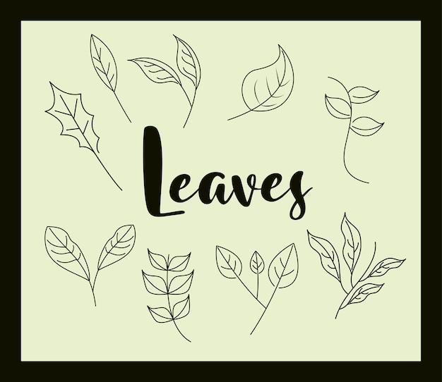 Folhas estilo ícone de linha, letras manuscritas com ramos de folhagem naturais