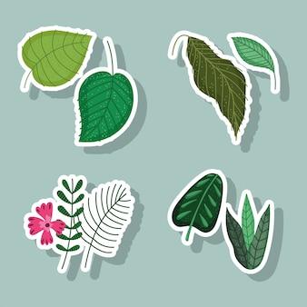 Folhas, flores, ramos, natureza, folhagens, desenhos animados, florais, ícones, adesivos