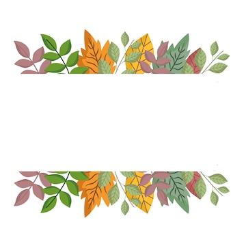Folhas, folhagem, natureza, vegetação, ilustração