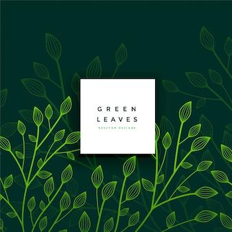 Folhas, folhagem, verde, cartão
