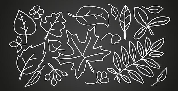 Folhas lineares de outono definidas isoladas em fundo preto elementos de folhagem de árvores