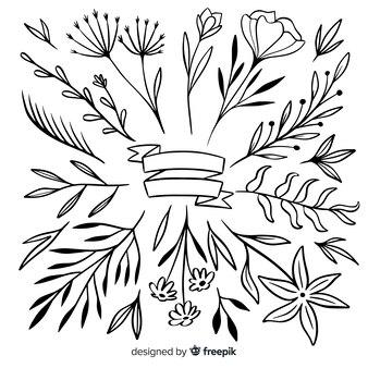 Folhas ornamentais e coleção de flores desenhadas à mão
