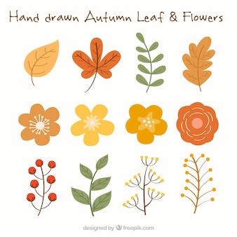 Folhas outonais e flores em cores quentes