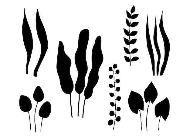 Folhas pretas ou silhuetas de folhagens isoladas no fundo branco