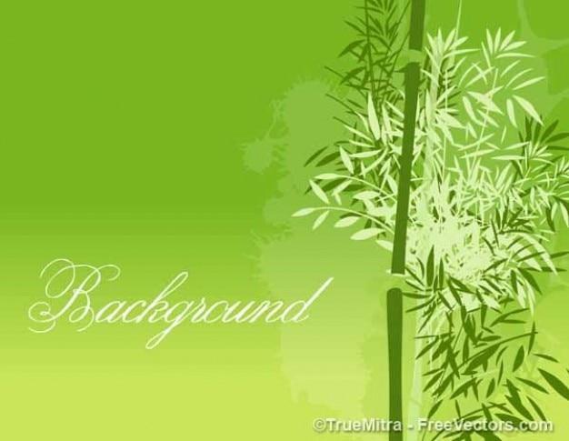 Folhas sobre fundo verde