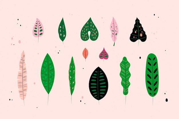 Folhas tropicais abstratas