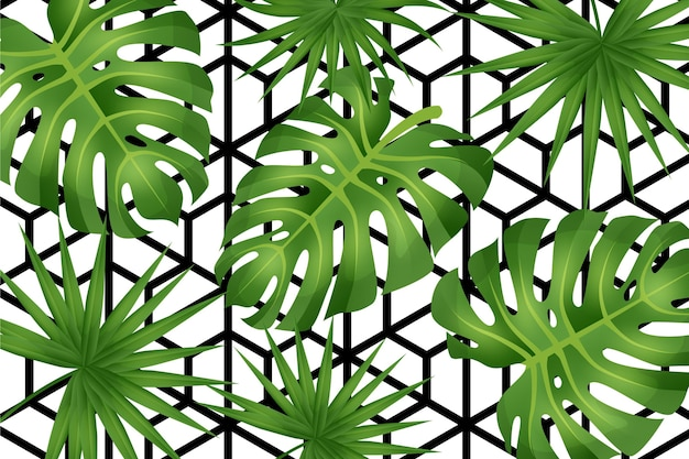 Folhas tropicais com fundo geométrico
