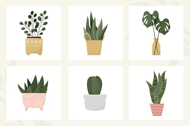 Folhas tropicais em vasos, cactos, babosa, suculenta, decoração moderna com planta de casa em vaso de flores
