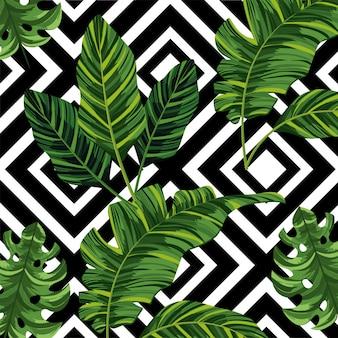 Folhas tropicais, plantas, e, figuras, fundo