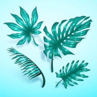 Folhas tropicais turquesa monocromáticas
