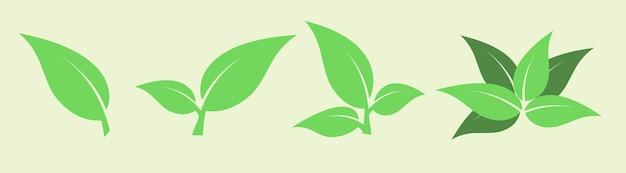 Folhas verdes de vetor para produtos naturais e ecológicos, logotipo bio orgânico, farmácia cosmética